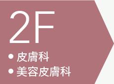 2F 皮膚科 美容皮膚科